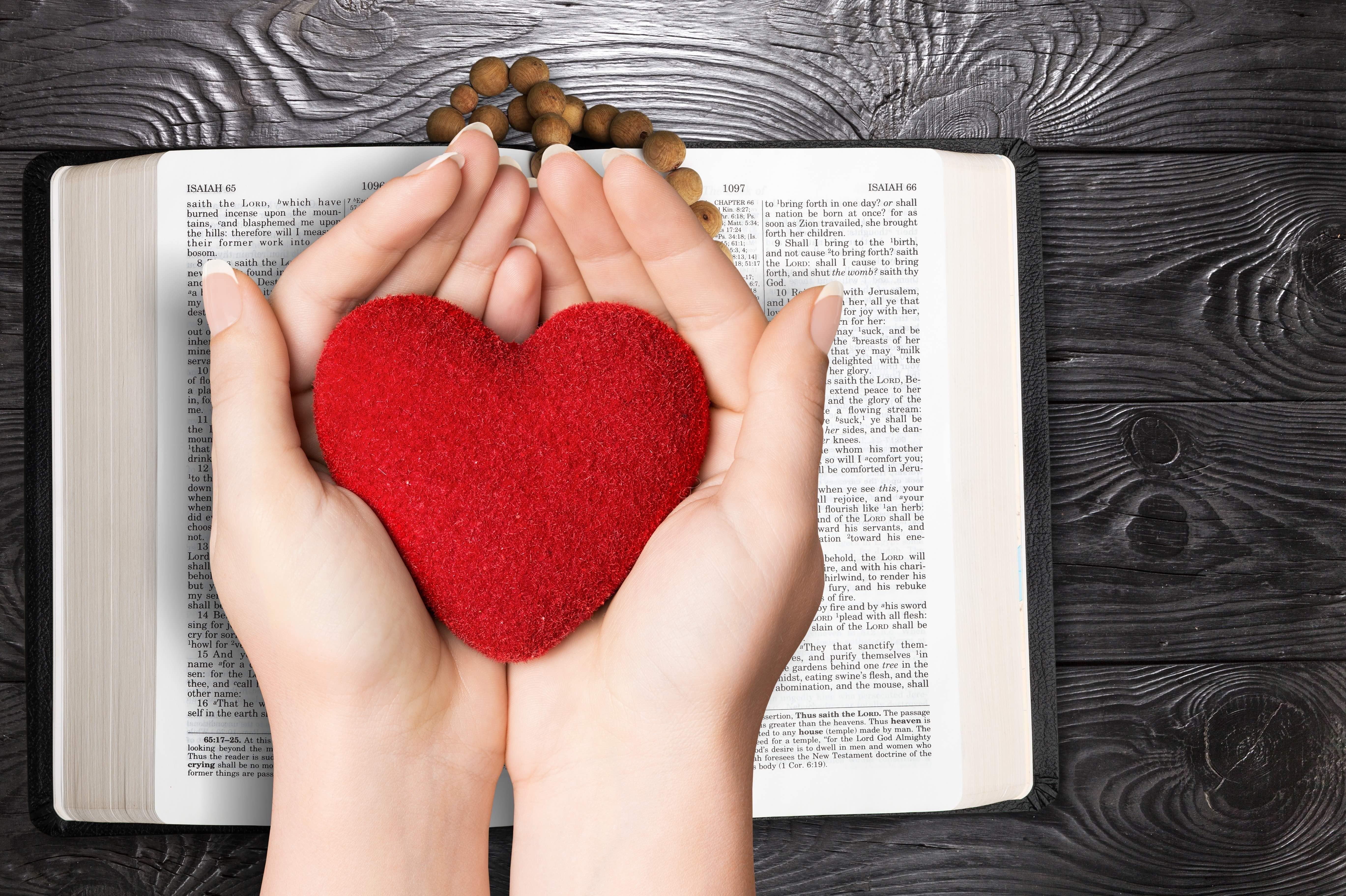 nadie te ama más que yo, somos un libro